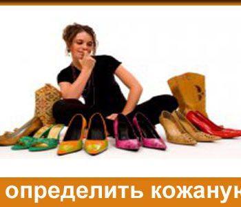 определить кожаную обувь
